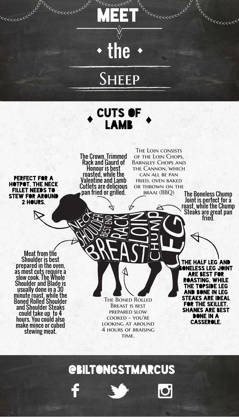 meet-the-sheep